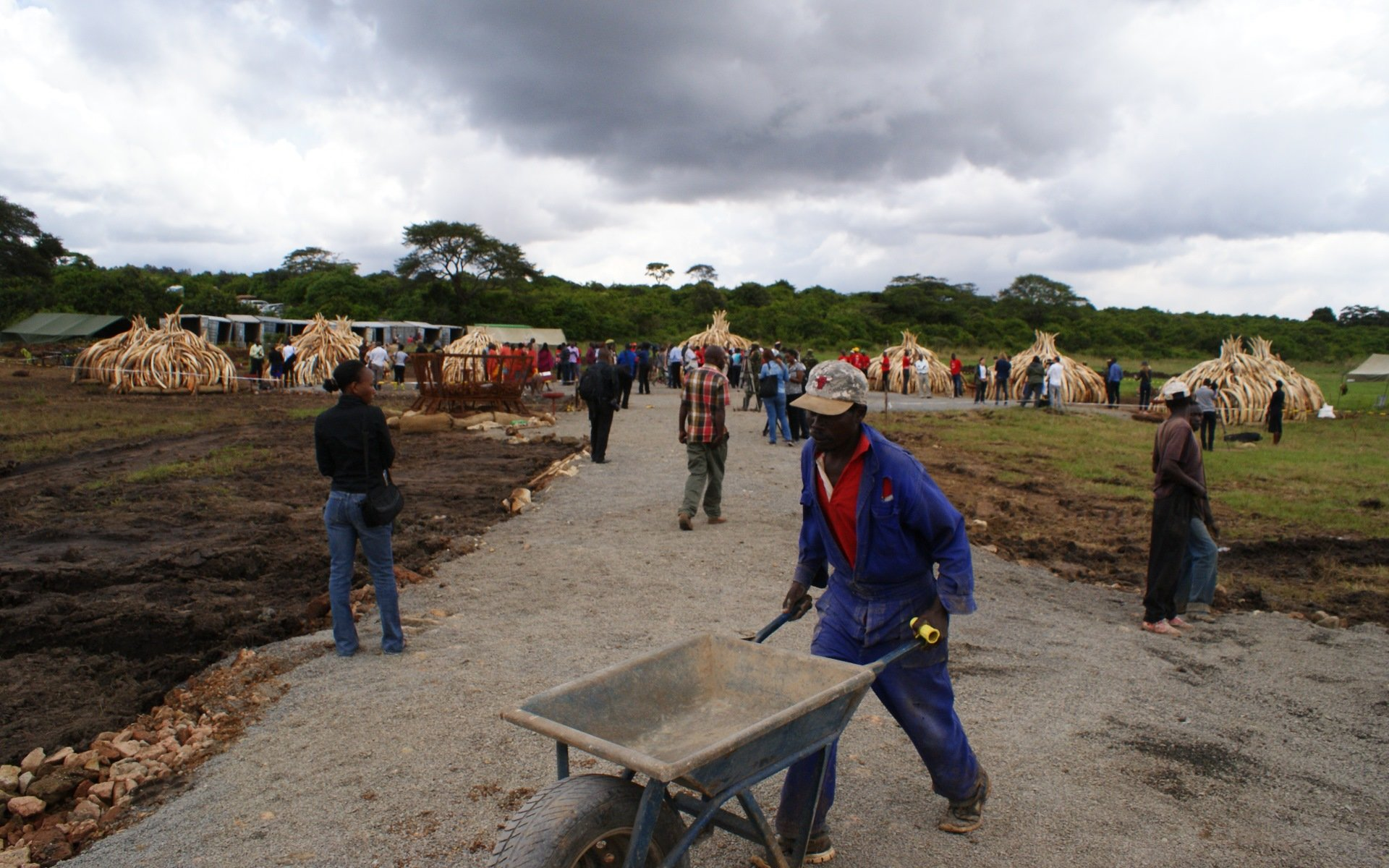 It took KWS personnel working round the clock 10 days to build the towers.