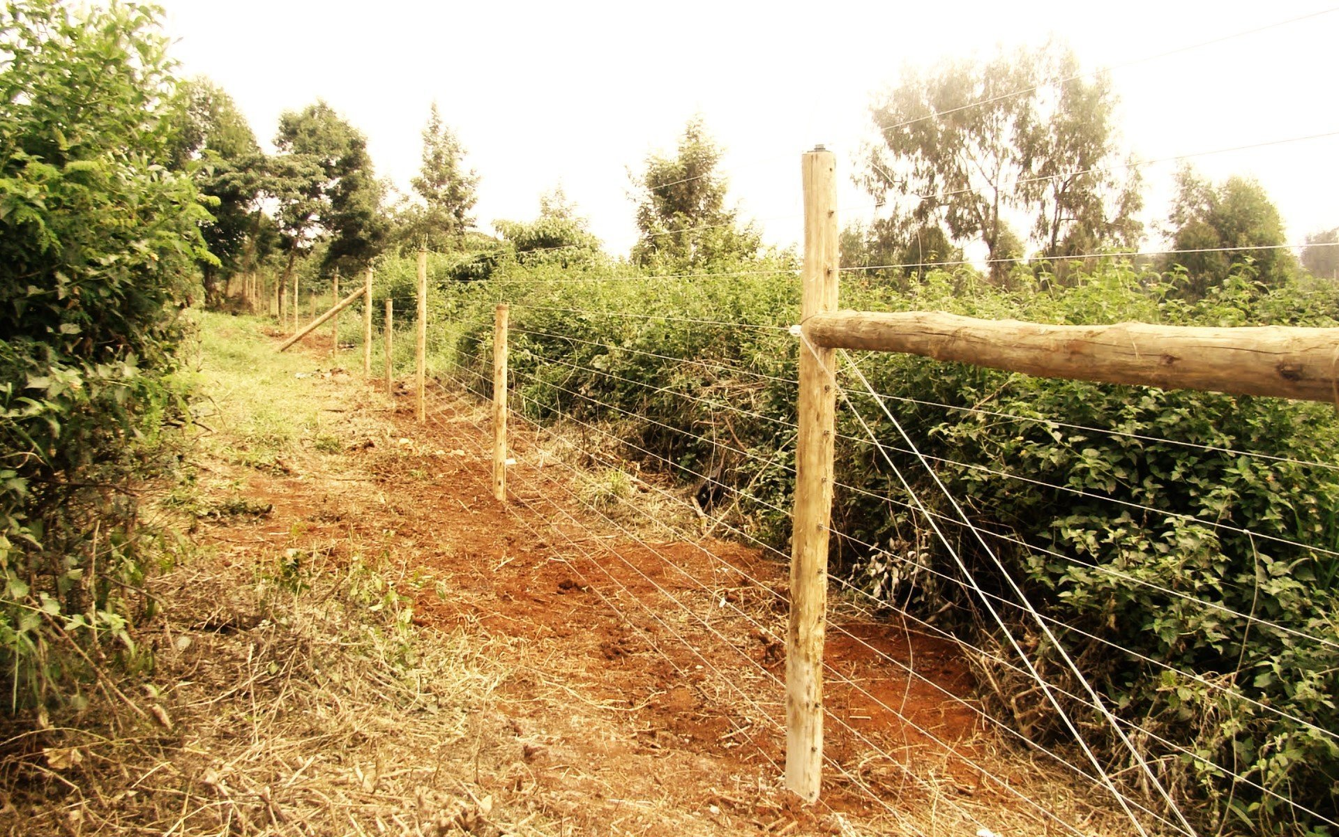 New Tsavo fence will lower human-wildlife conflict