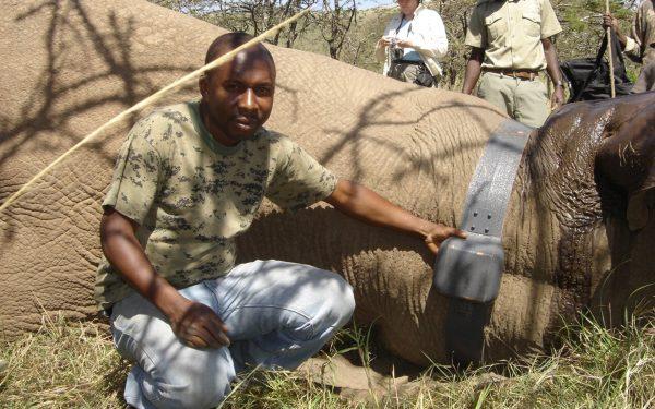 Thanks to GPS, Tsavo elephants are still alive