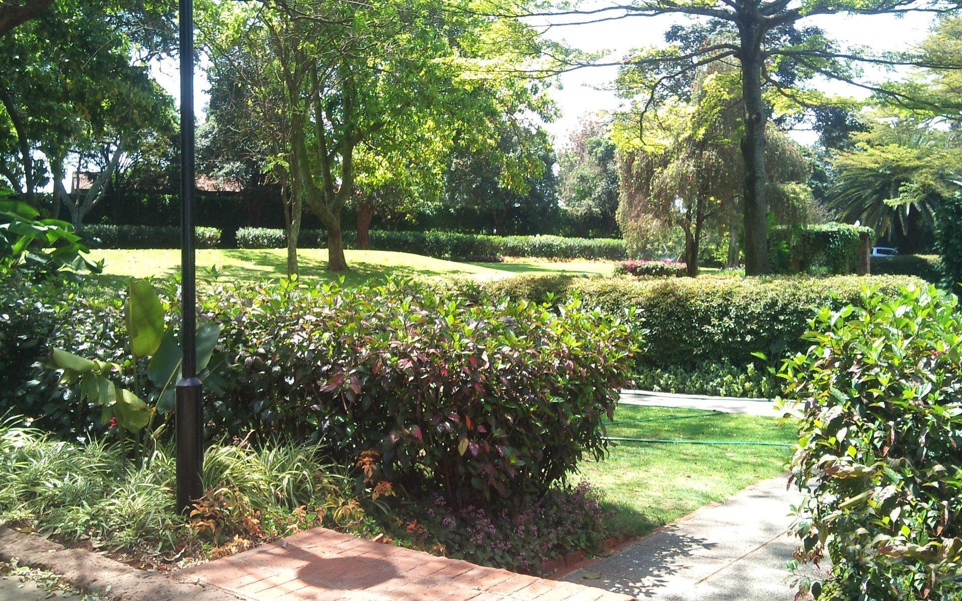 Kingdom Gardens Guest House: Garden