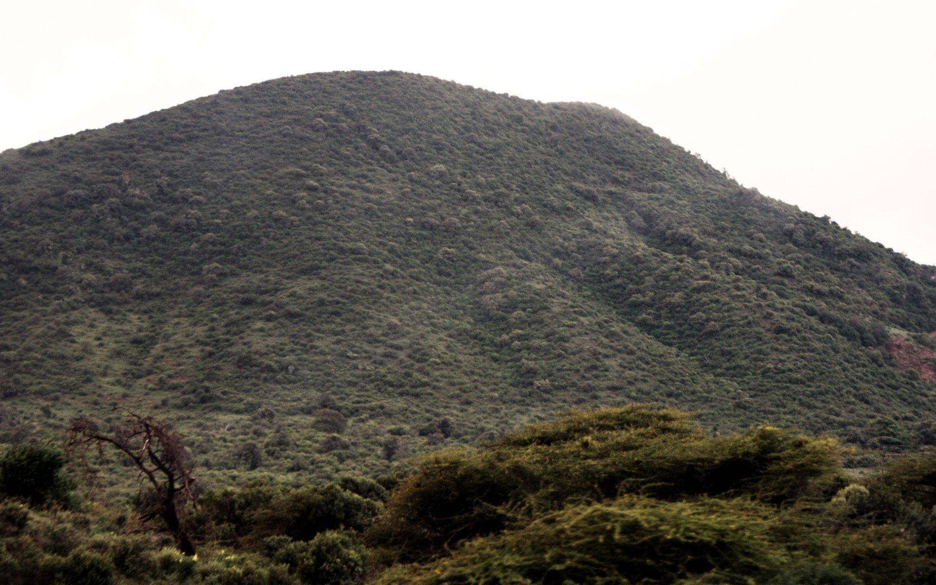 Marsabit National Park expecting major facelift