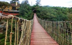 Rolf's Place is a bush resort situated at the south east border of the Nairobi National Park and owned by Rolf Schmid. To access it, one has to go through a suspension bridge that gives the feeling of a jungle adventure.