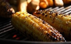 Roasted Maize, in Kenya and indeed in Africa, has become a popular snack and the business of roasting maize has equally become a vibrant and booming one.