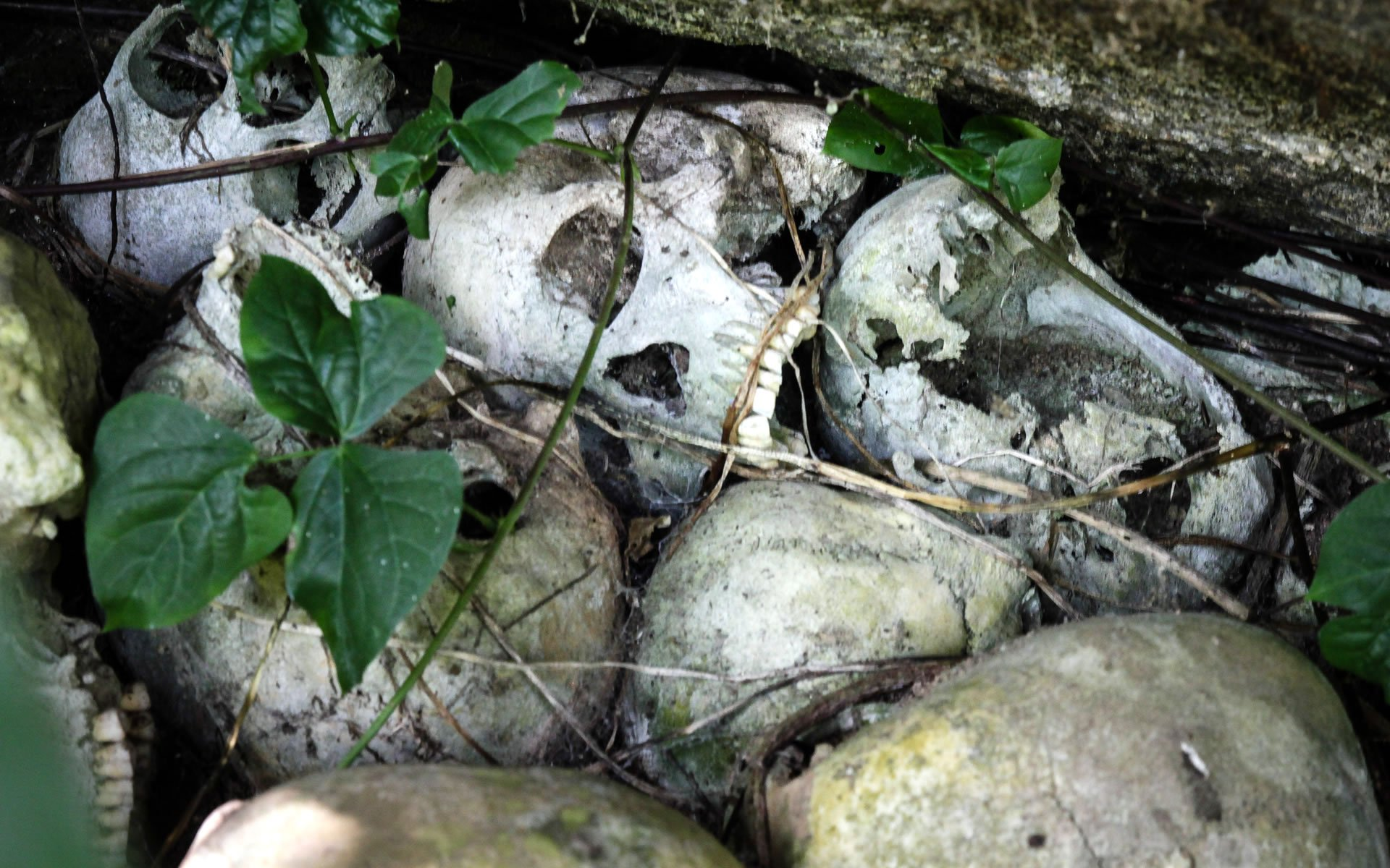 The Taita Skull Caves are the spectacular end result of an ancient and strange burial culture practised among the Wasagalla, Wadawida and Wakasigau people.