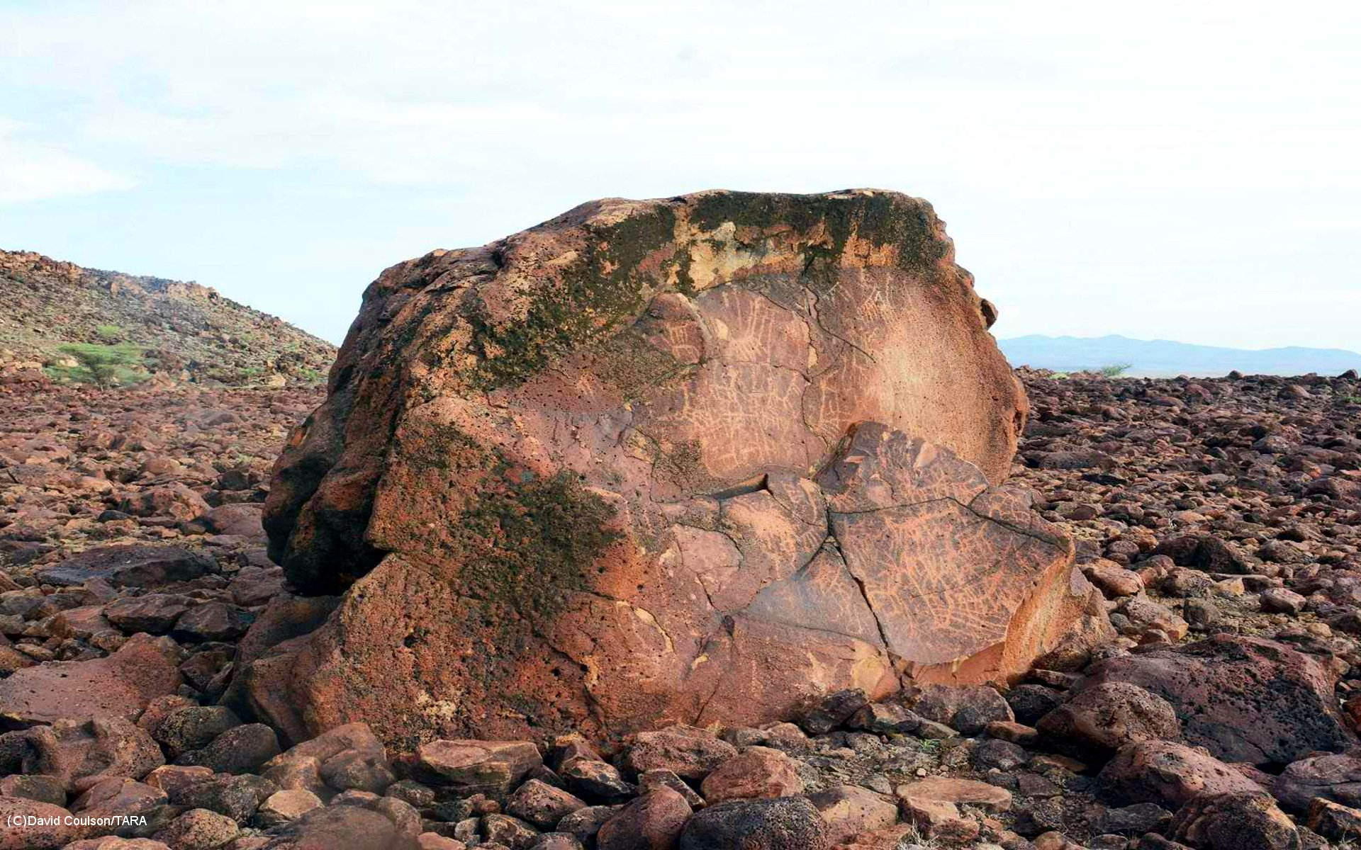 Examples of rock art found in Namoratunga I.