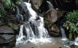 Nairobi is home to beautiful, well-kept nature trails where you can while away a weekend in and the Oloolua Nature Trail in Karen is one of them.