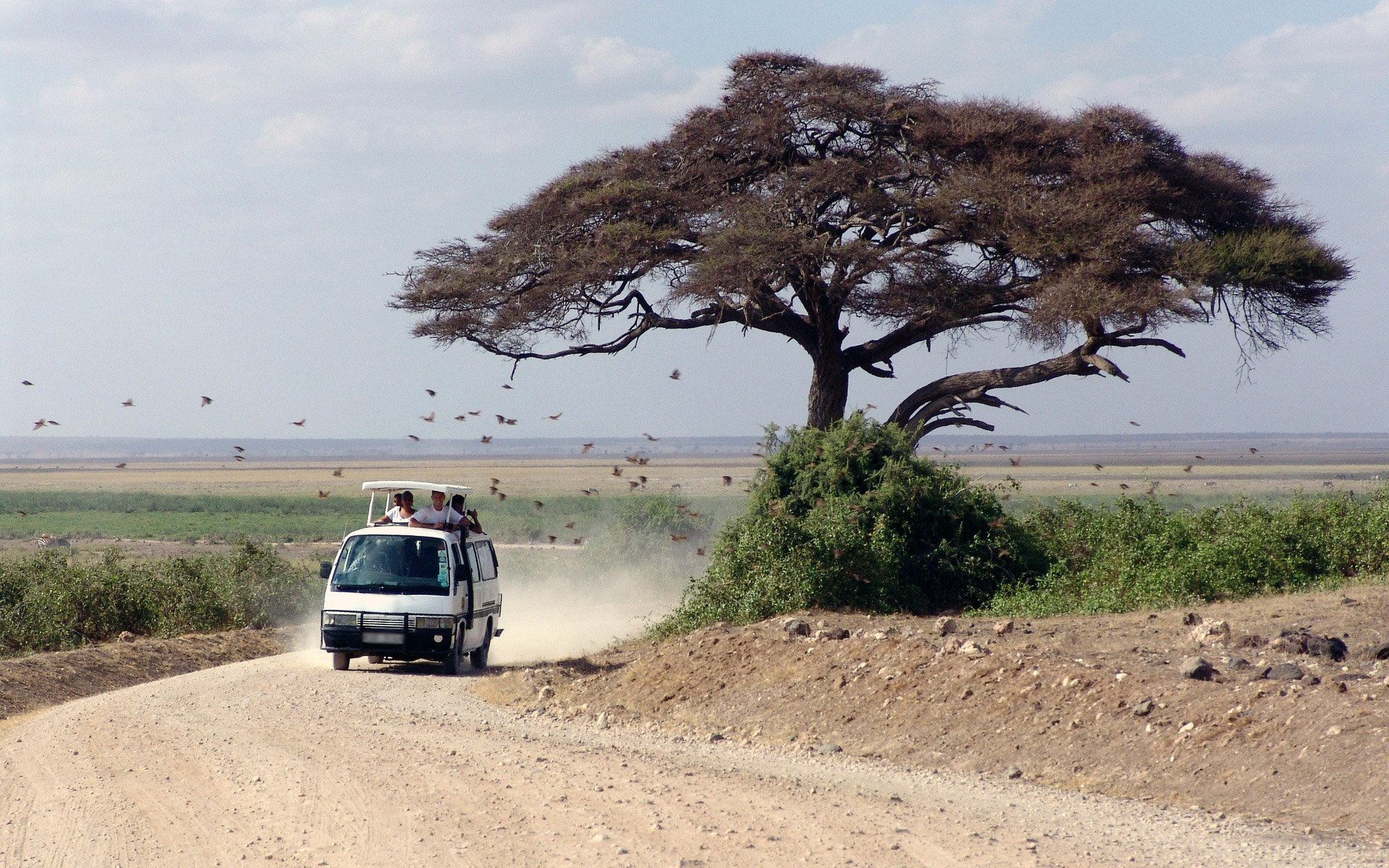 Carsickness is not something you can just wish away. I have compiled a list of effective tips to help you cope as you travel through Kenya.