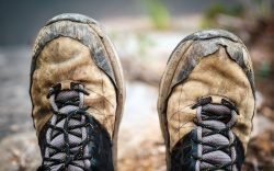 Hiking is often a long and tedious affair that will have you on your feet for most of the time. Picking the right hiking shoes is thus essential.