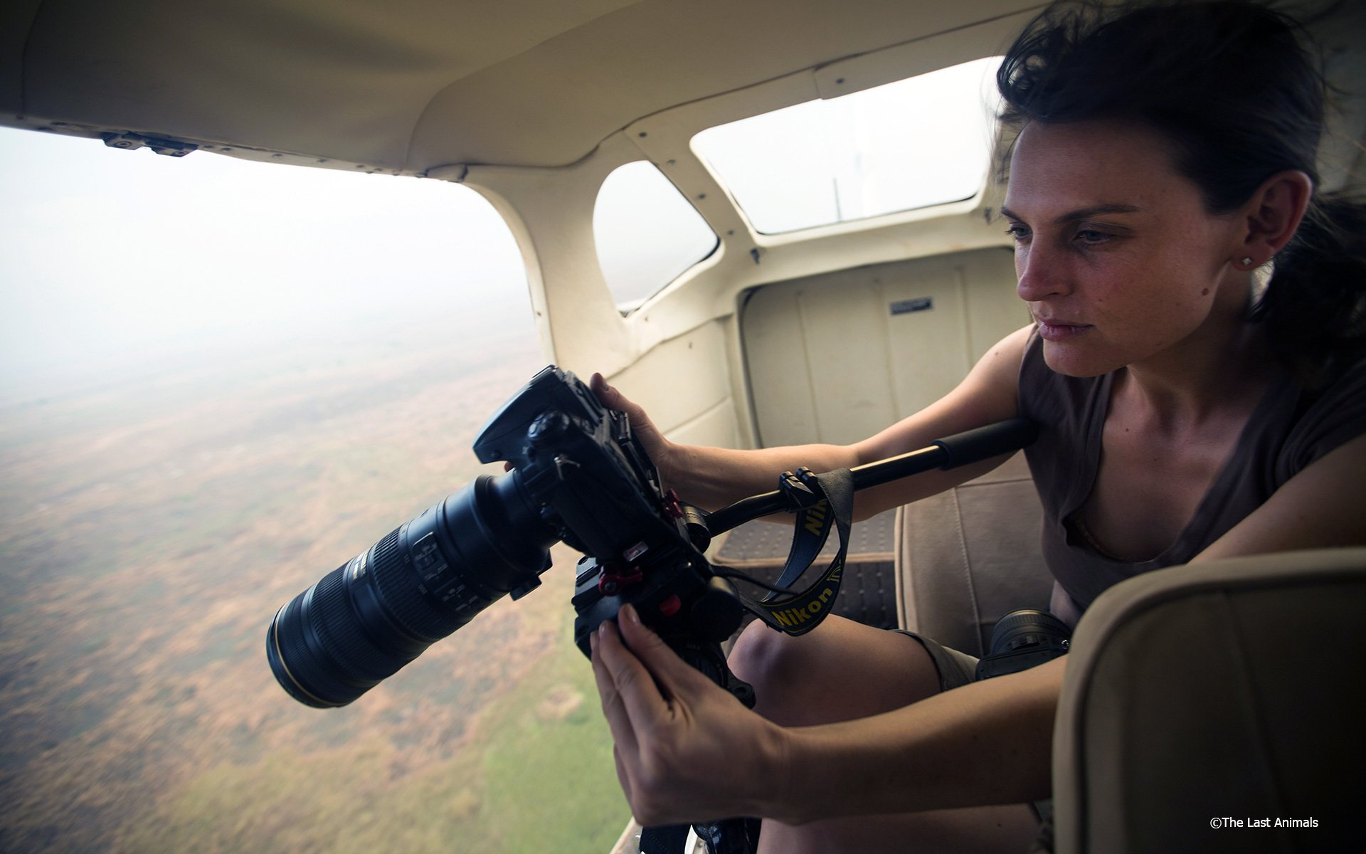 Posing as a tourist, Kate gives us a sobering glimpse into the plight of the African Elephant and rhino.