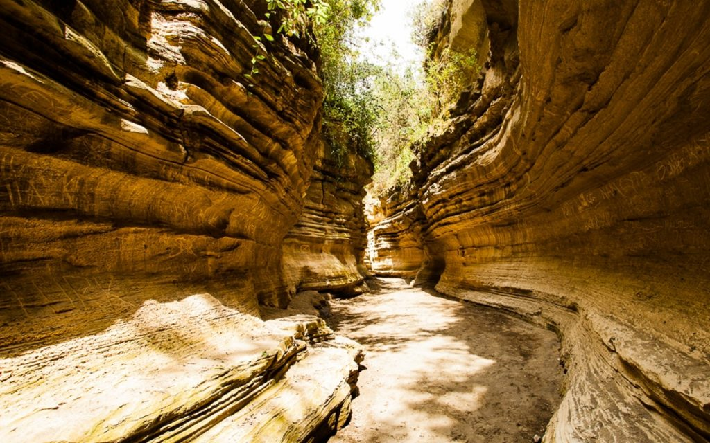 Besides the walks among wildlife and the Fischer's Tower, this is the next big attraction at Hell's Gate National Park. Walking in the gorge takes about 2 hours through astonishing beauty.