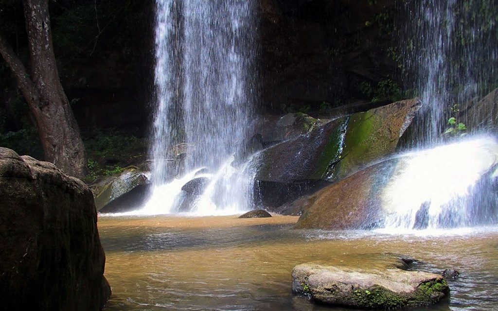 The Sheldrick Falls is a must-visit at the park. It is a 2 KM walk along a marked footpath that is best done in the company of a Kenya Wildlife Service ranger because elephants and a few buffalo occasionally show up.
