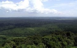 Did you know the Kakamega Forest Reserve is a national heritage site? Make sure you include these 7 things in your bucket list.