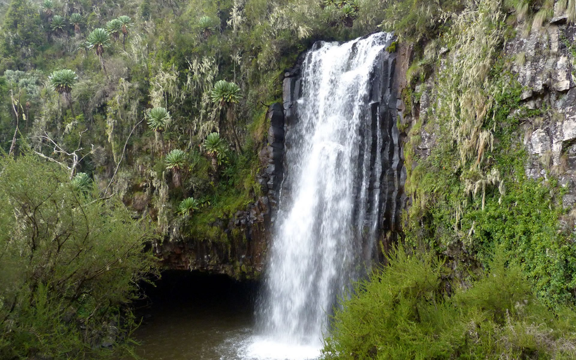 Gura Falls in the Aberdare National Park is the tallest waterfall in Kenya followed by Karuru. Fans of the film 'Out of Africa' may recognise this waterfall from the scene when Robert Redford squires Meryl Streep up in a Gypsy Moth.
