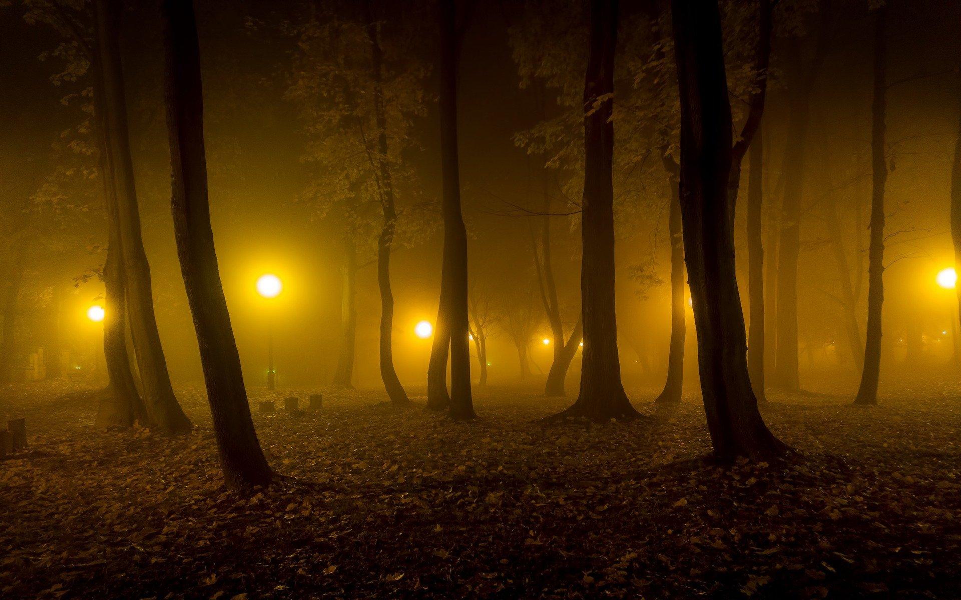 Smart Lights Will Soon Illuminate City Parks