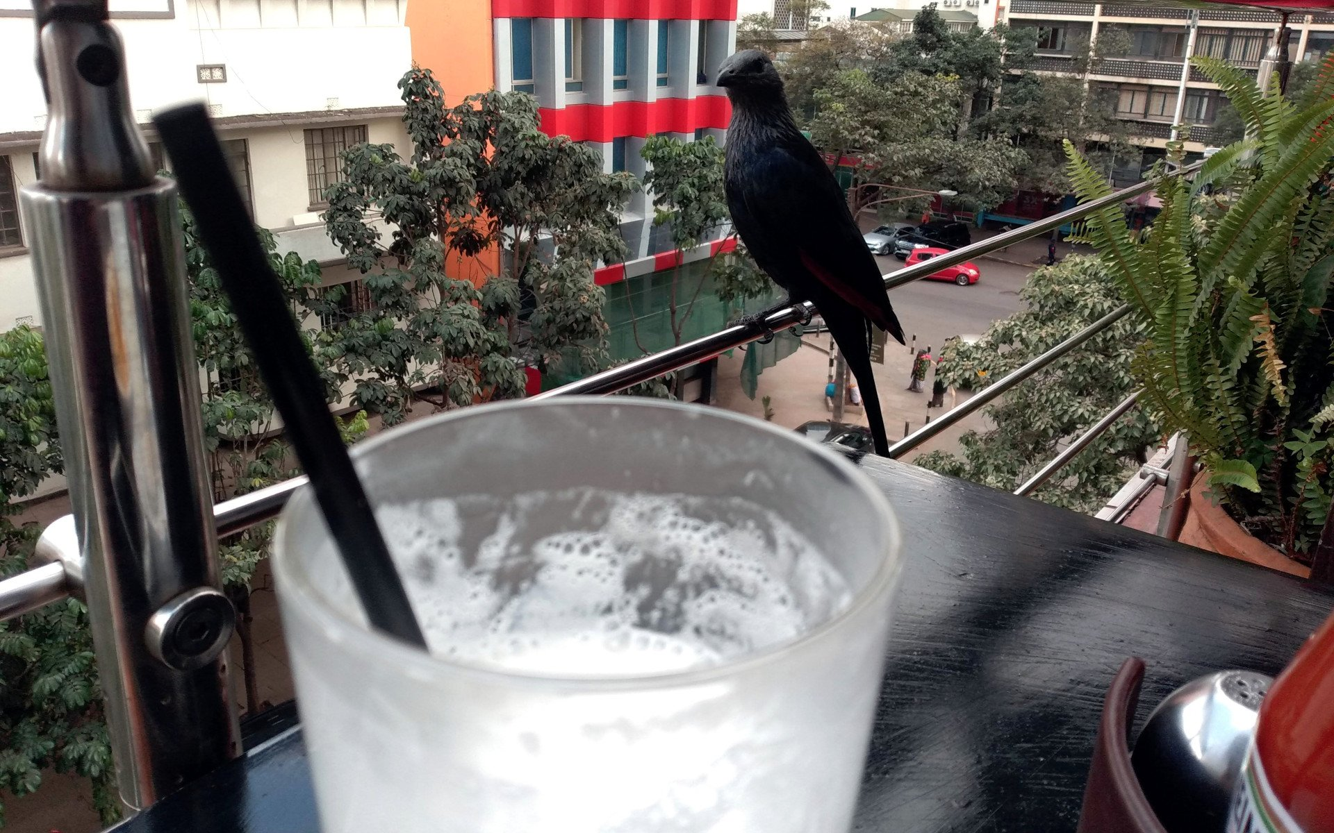 Valley Coffee Shake sits on the third floor of Yala Towers along the famous Biashara Street. Right in the heart of Nairobi's CBD, its one of those restaurants in Nairobi that offers excellent views of the ever-changing city skyline.